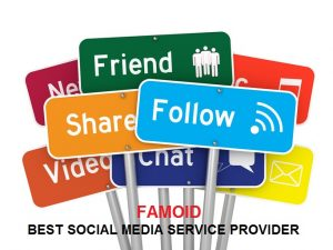 Famoid Review: Best Social Media Service Provider